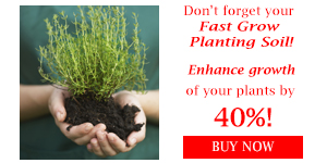 Don't forget your planting soil!